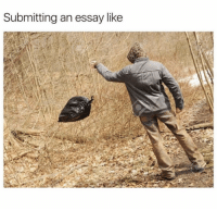 Like and  Essay: Submitting an essay like