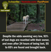 Dogs, Memes, and youtube.com: Subscribe : Youtube.com/FactPoint  FACT POINT  Despite the odds seeming very low, 93%  of lost dogs are reunited with their owner,  and even after 24 hours of being lost, 55  to 65% are found and brought back. factpoint Subscribe to our YouTube channel: Youtube.com-factpoint Sources mentioned here : fact point.info Posted By Admin : @TheAmitBaghel