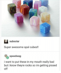 Bad, Memes, and Awesome: subsolar  Super awesome opal cubes!!  speedwag  i want to put these in my mouth really bad  but i know theyre rocks so im getting pissed  off Crunch crunch munch - Max textpost textposts
