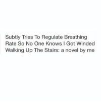 Subte: Subtly Tries To Regulate Breathing  Rate So No One Knows I Got Winded  Walking Up The Stairs: a novel by me