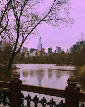 Tumblr, Blog, and Http: suburban-royalty:  Central Park feels