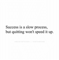 Memes, Never, and Success: Success is a slow process,  but quitting won't speed it up  AGENTSTEVENINSTAGRAM If you keep quitting, you will never attain success.