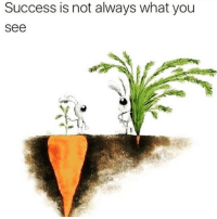 Tumblr, Http, and Success: Success is not always what you  see @studentlifeproblems