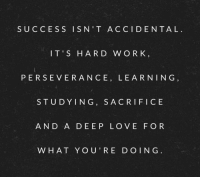 Perseverance, Success, and Deep: SUCCESS ISN'T ACCIDENTAL  IT'S HARD W OR K  PERSEVERANCE, LEARNING  STUDYING, SACRIFICE  AND A DEEP LO VE FO R  W HAT YOU'RE DO ING