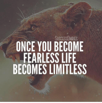 Defeat your fears and you'll conquer life! So many times we let fear hold us back from enjoying life. Don't let your fears control your life. Conquer your fears and you'll be able to do anything. • • • fearless lion lions limitless lifequotes nofear dreambig: SUCCESSDIARIES  ONCE YOU BECOME  FEARLESS LIFE  BECOMES LIMITLESS Defeat your fears and you'll conquer life! So many times we let fear hold us back from enjoying life. Don't let your fears control your life. Conquer your fears and you'll be able to do anything. • • • fearless lion lions limitless lifequotes nofear dreambig