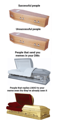 Lmao, Meme, and Memes: Successful people  Unsuccessful people  People that send you  memes in your DMs  People that replies LMAO to your  meme even tho they've already seen it Pure Gold