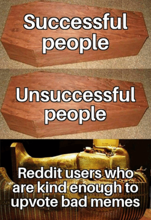 Bad, Memes, and Reddit: Successful  people  Unsuccessful  people  Reddit users who  are kind enough to  upvote bad memes Extra wholesome