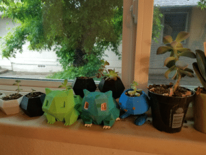 succulents4life:  a small section of my living room windowsill, where I keep most of my little succulents! most of them were grown from clippings or loose leaves 💚🌱  Aww so cute!! Love the planters ☺️💕: succulents4life:  a small section of my living room windowsill, where I keep most of my little succulents! most of them were grown from clippings or loose leaves 💚🌱  Aww so cute!! Love the planters ☺️💕