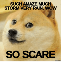 meme.com: SUCH AMAZE MUCH  STORM VERY RAIN, WOW  SO SCARE  Memes Com
