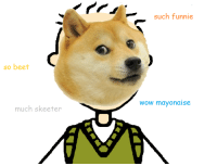 Douge: such funnie  so beet  wow mayonaise  much skeeter Douge