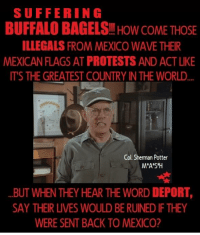 Memes, Waves, and Buffalo: SUFFERING  BUFFALO BAGELS HOW COME THOSE  ILLEGALS FROM MEXICO WAVE THEIR  MEXICAN FLAGSAT PROTESTS AND ACTLIKE  ITS THE GREATEST COUNTRY INTHE WORLD  Col. Sherman Potter  M*A*S*H  BUT WHEN THEY HEAR THE WORD DEPORT,  SAY THEIR LIVES WOULD BERUINED IFTHEY  WERE SENT BACK TO MEXICO?