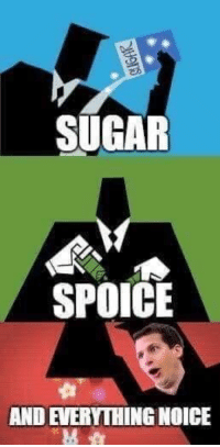 Memes, Live, and Sugar: SUGAR  SPOICE  AND EVERYTHING NOICE