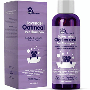 Amazon, Dogs, and Puppies: Suh end n  id pt sdours  Pet Pleasant  acod  Lavender  Oatmeal  Pet Shampoo  ar  Pet Pleasant  Lavender,  Oatmeal  Pet Shampoo  Gentle Pet Grooming for  Dogs and Puppies  al  Gentle Pet Grooming for  Dogs and Puppies  natural medicated strength pet  shompoo with jojoba, lavender essential  ol and colloidal oatmeal to clean,  deodorize ond freshen,  natural, medicated strength pet  tompoo with jojoba, lavender essentil  oil and colloidal oatmeal to clean,  deodorize and freshen.  Tear Free Paraben Free  Sulfate Free Cruelty Free  8 ox. (236ml)  ww  eor ree Poralen Free  Sufate Free Cruelty Free  8 o. (236ml Best Shampoo for Smelly Dogs: Amazon.com