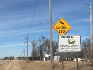 Deer, Iowa, and Living: SUICIDAL  DEER  Come join US...  MITCHELL COUNTY  www.mitchellcountyia.com  (641) 732-4790 Found this sign in Iowa. Even the deer hate living here.
