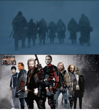Memes, Squad, and Suicide Squad: Suicide Squad #GameOfThrones https://t.co/ImvwvStAiV
