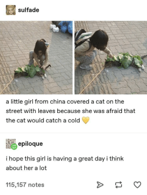 China, Girl, and Cold: sulfade  a little girl from china covered a cat on the  street with leaves because she was afraid that  the cat would catch a cold  epiloque  i hope this girl is having a great day i think  about her a lot  115,157 notes The sweetest little thing