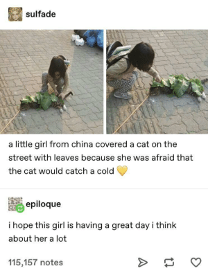 wholesomeness over 9000 via /r/wholesomememes https://ift.tt/2MiJtac: sulfade  a little girl from china covered a cat on the  street with leaves because she was afraid that  the cat would catch a cold  epiloque  i hope this girl is having a great day i think  about her a lot  115,157 notes wholesomeness over 9000 via /r/wholesomememes https://ift.tt/2MiJtac