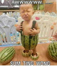 lol itsfunny asianpeopleproblems: SUM TING WONG lol itsfunny asianpeopleproblems