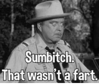 Sumbitch: sumbitch  That wasnt a fart