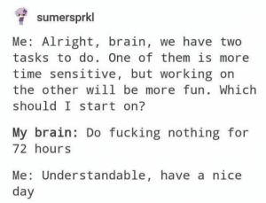 Dank, Fucking, and Memes: sumersprkl  Me: Alright, brain, we have two  tasks to do. One of them is more  time sensitive, but working on  the other will be more fun. Which  should I start on?  My brain: Do fucking nothing for  72 hours  Me: Understandable, have a nice  day meirl by Simranjit16 MORE MEMES