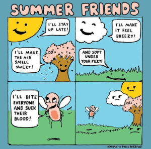 Friends, Funny, and Smell: SUMMER FRIENDS  I'LL STAY  UP LATE!  I'LL MAKE  IT FEEL  BREEZY!  THE AIR  SMELL  SWEET!  UNDER  YOUR FEET!  I'll BITE  EVERYONEAA  AND SUCK  THEIR  BLOOD!  cds  NATHAN W PYLE/BUZZFEED Happy Summer! via /r/funny https://ift.tt/2KhsCkh