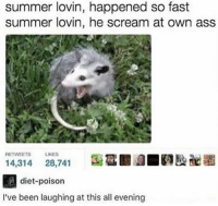 Ass, Memes, and Scream: summer lovin, happened so fast  summer lovin, he scream at own ass  RETWEETS  LIKES  diet-poison  I've been laughing at this all evening