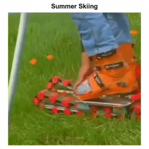 Memes, Summer, and 🤖: Summer Skiing RT @StumblerSports: https://t.co/0lKDuAkq6t