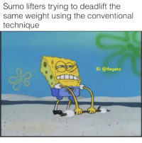 Memes, 🤖, and Sumo: Sumo lifters trying to deadlift the  same weight using the conventional  technique  1G: @thegainz I'm just saying 🤭