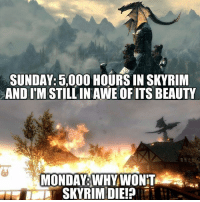 Where do you stand?: SUNDAY: 5,000 HOURS IN SKYRIM  AND ITM STILL IN AWE OF ITS BEAUTY  MONDAY WHY WONT Where do you stand?