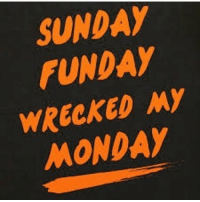 SUNDAY  FUNDAY  WRECKED MY  MONDAY It's all fun and games until...