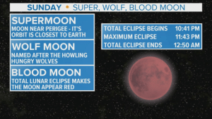 Did you see the super blood wolf moon? | ksdk.com: SUNDAY  SUPER, WOLF, BLOOD MOON  SUPERMOON  MOON NEAR PERIGEE IT'S  ORBIT IS CLOSEST TO EARTH  TOTAL ECLIPSE BEGINS  MAXIMUM ECLIPSE  TOTAL ECLIPSE ENDS  10:41 PM  11:43 PM  WOLF MOON  NAMED AFTER THE HOWLING  HUNGRY WOLVES  12:50 AM  BLOOD MOON  TOTAL LUNAR ECLIPSE MAKES  THE MOON APPEAR RED Did you see the super blood wolf moon? | ksdk.com
