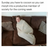 Repost of what I would consider to be one of my top 10: Sunday you have to cocoon so you can  morph into a productive member of  society for the coming week Repost of what I would consider to be one of my top 10