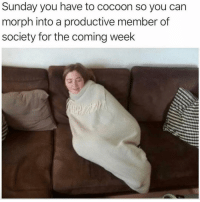 Memes, Sunday, and 🤖: Sunday you have to cocoon so you can  morph into a productive member of  society for the coming week Exactly! 😂