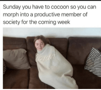 Meirl: Sunday you have to cocoon so you can  morph into a productive member of  society for the coming week Meirl