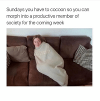 Girl Memes, Can, and Cocoon: Sundays you have to cocoon so you can  morph into a productive member of  society for the coming week