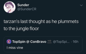 me_irl : me_irl: Sunder  @SunderCR  tarzan's last thought as he plummets  to the jungle floor  TopSpin @ ConBravo ON  @TopSpi... 16h  I miss vine me_irl : me_irl