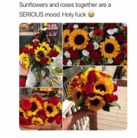 Mood, Fuck, and Girl Memes: Sunflowers and roses together are a  SERIOUS mood. Holy fuck Check out my story 💅🏼