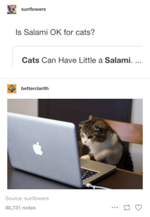Cats, Tumblr, and Source: sunflowers  Is Salami OK for cats?  Cats Can Have Little a Salami....  betterclarith  Source: sunflowers  80,731 notes Let Them Indulge. ...