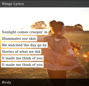 Birdy-Fire Within