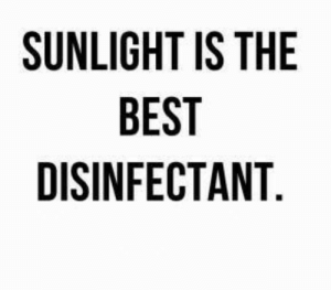 sunlight: SUNLIGHT IS THE  BEST  DISINFECTANT.
