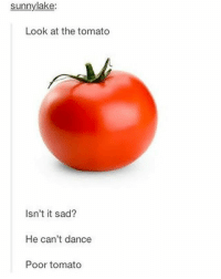 Funny, Head, and Lol: sunny lake:  Look at the tomato  Isn't it sad?  He can't dance  Poor tomato Thanks to @weirdfandomaccount this has been stuck in my head for twenty four hours now. 😂 -Maddie🦉 funny cleanfunny humor cleanhumor comedy cleancomedy memes meme cleanmemes funnymemes lol cleanlol haha cleanhaha rofl cleanrofl noswearing cleanaccount 😂 😂😂