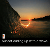 Memes, Waves, and Sunset: Sunset curling up with a wave.