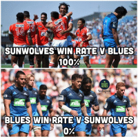 Anaconda, Memes, and Rugby: SUNWOLVES WIN RATE V BLUES  100%  RUGBY  MEMES  nib  tib  BLUES WIN RATE V SUNWOLVES  0% Tag a Blues fan 😉 rugby blues sunwolves banter