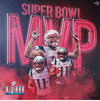Memes, Nfl, and Super Bowl: SUPER BOWL  NFL  PATAIO  PATR OTS  SUPER B O W L .@SuperBowl LIII MVP: Julian @Edelman11!!! #SBLIII  #EverythingWeGot https://t.co/i4X81xZ2sx