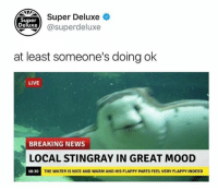 Dank, Mood, and News: Super Deluxe  Super  eluxe@superdeluxe  at least someone's doing ok  LIVE  BREAKING NEWS  LOCAL STINGRAY IN GREAT MOOD  18:30  THE WATER IS NICE AND WARM AND HIS FLAPPY PARTS FEEL VERY FLAPPY INDEED What a happy little fella 😂 check out @superdeluxe for all things dank! 🔥