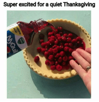50 Funny Food Memes That'll Keep You Laughing For Hours: Super excited for a quiet Thanksgiving 50 Funny Food Memes That'll Keep You Laughing For Hours