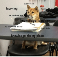 Such lerning: super focis  learning  focis  i am rae  to lern  nowdlege is pow  its leviosa no levisar  focis  am knowledge tkaing place Such lerning
