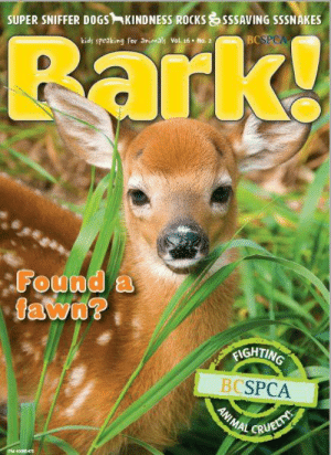 Being Alone, Animals, and Dogs: SUPER SNIFFER DOGS-KINDNESS ROCKS  kids speaking for  SSSAVING SSSNAKES  BC  PCA  animals Vol 16 No. 2  ounda  IGHTIN  BCSPCA Teachers, does your class know what to do if they see a fawn alone in the wild? We cover this and more in the latest issue of Bark! magazine, springing into mailboxes across B.C. soon. Here's a sneak peak: support.spca.bc.ca/site/MessageViewer?em_id=23130.0&dlv_id=53529  And don't forget to sign-up for e-Teacher while you're at it! You'll receive exclusive access to a free class set of Bark! magazine! www.spca.bc.ca/eteacher