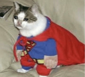 Superman | Crying Cat | Know Your Meme | Crying Meme on ME.ME