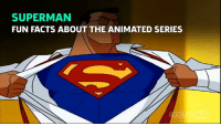 Fun facts about my show. Did you ever watch my show or only Batman's? -Superman Gotham City Memes: SUPERMAN  FUN FACTS ABOUT THE ANIMATED SERIES Fun facts about my show. Did you ever watch my show or only Batman's? -Superman Gotham City Memes